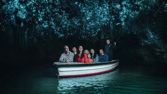 This half day Waitomo Caves tour will take you on a journey through the lush and rolling countryside of the Waikato and King Country regions, giving you a taste of rural New Zealand.A knowledgeable local guide, will give you a tour of Waitomo Caves ...