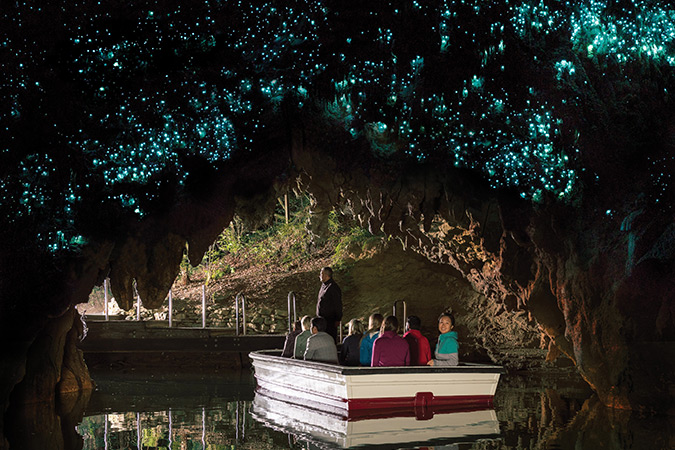 On your way back to Auckland, take a trip underground with a guided tour through the world famous Waitomo Glowworm Caves, and see stalagmites and stalactites illuminated by the lights of thousands of tiny glowworms.